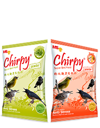 Chirpy Powder